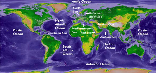 Biosciences - Our oceans and seas